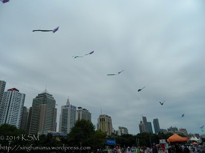 A string of kites flying on the waterfront with modern buildings in the background.