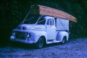 An old ford pickup truck loaded down with lumber.