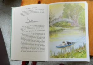 Illustration from the Wind in the Willows.