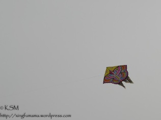 KSM20140415Lets-go-fly-a-kite02-480px