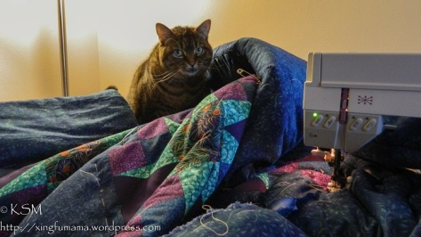 Cat sitting on a quilt being sewn n a sewing machine.