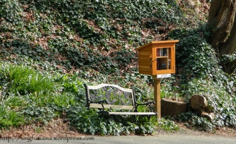 Micro library in the woods.