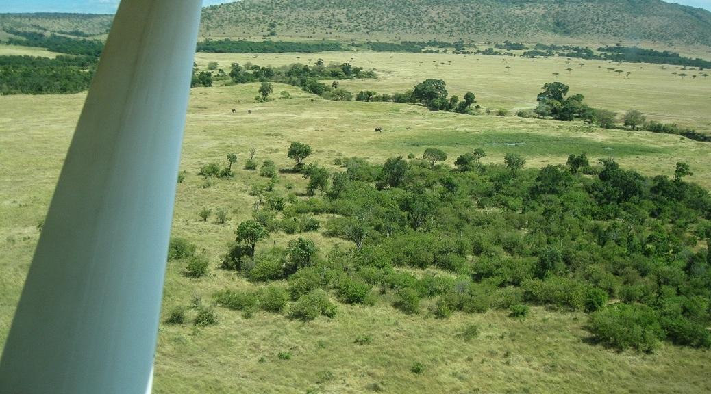 Arriving at Kichwa Tembo.