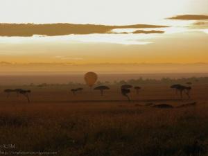 Hot air balloon landing at sunrise.