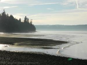 Puget Sound beach at Cedarhurst on Vashon Island.