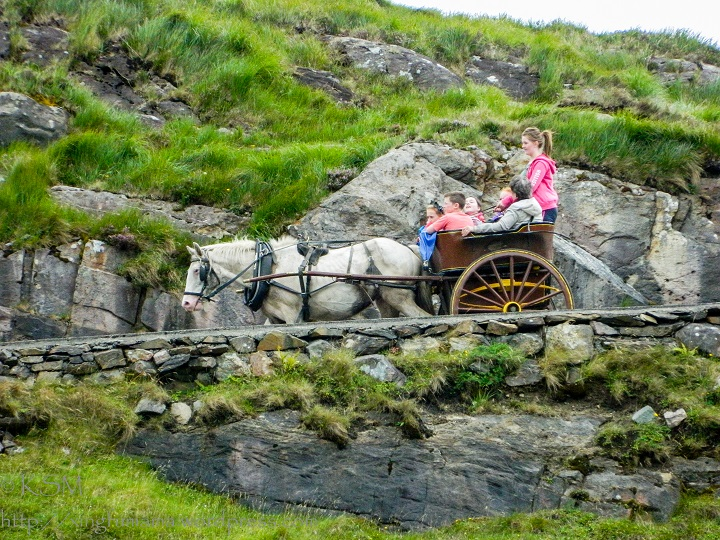On the way...by pony cart.
