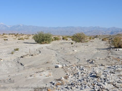 Little Morongo Wash in Desert Hot Springs CA.