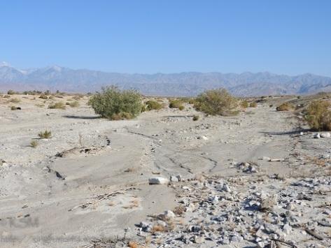 Little Morongo Wash in Desert Hot Springs CA.