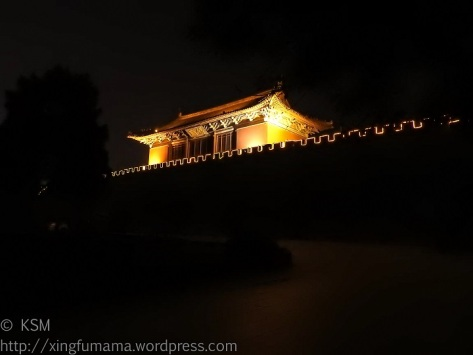 Dai Miao south gate at night.