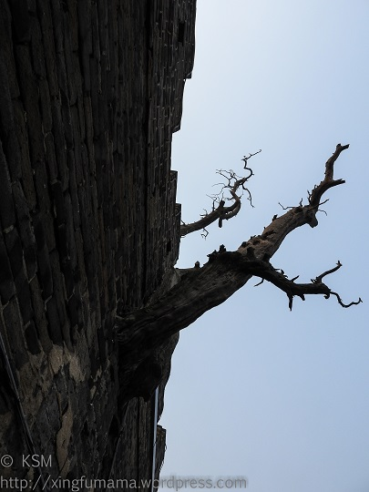 Dai Miao: Snag in the temple wall.