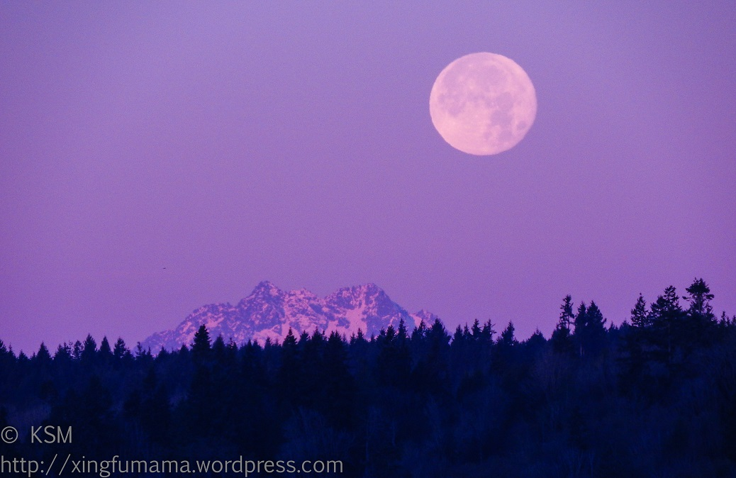 Full moon setting over the Kitsap Peninsula.