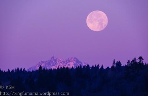 Full moon setting over the Kitsap Peninsula.