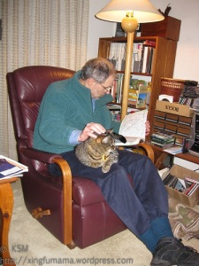Man reading and petting a cat.