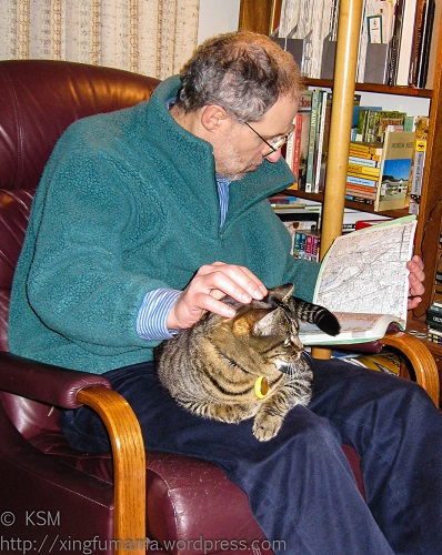 Man reading and petting cat.