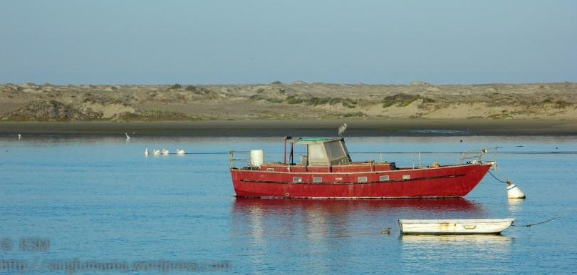 Boats and birds in Morro Bay California.