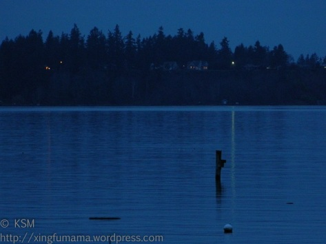 Night time on Puget Sound (Colvos Passage).