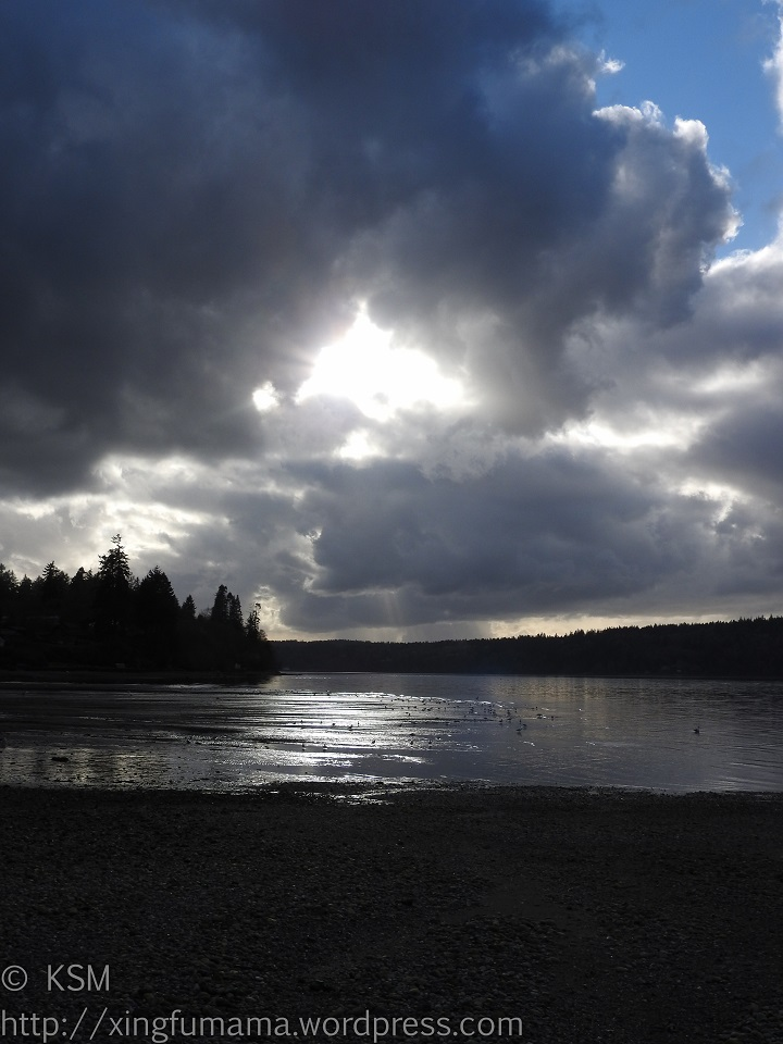 Storm clouds and calm water, Fern Cove, Vashon Island.