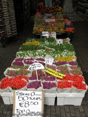 Flower market in Amsterdam.