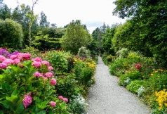Garden on Garinish island in western Ireland.