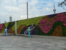 Tall buildings peeking over the wall of flowers separating the street from the Bund and a man using a twig broom.