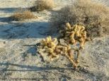 KSM-20130729-Desert_now-04