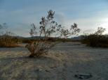KSM-20130801-Desert_now-05