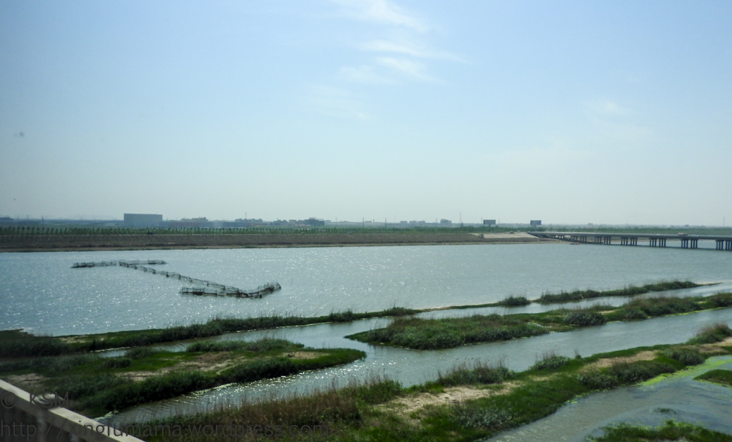Fish farm in the Yellow River in China.