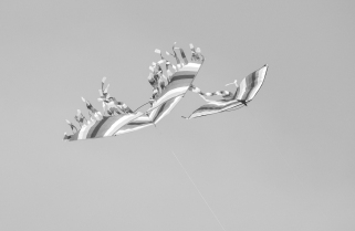 20170415-KSM-Flying_Things-3