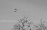 20170520-KSM-Flying_Things