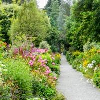 20130818-KSM-Garden_Path-02