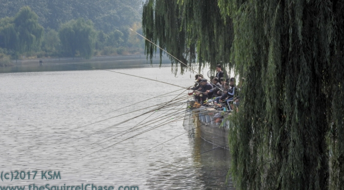 Fall in Shouguang-Fishing in the River