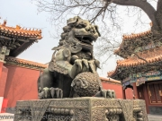 Lion at the Lama Temple in Beijing.