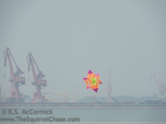 Kite with cranes in the background, Weifang International Kite Festival.