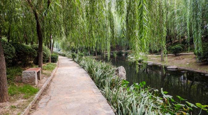 A walk in a park