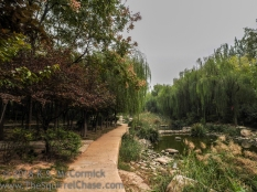 KSM-20161012-Weifang_Park-05