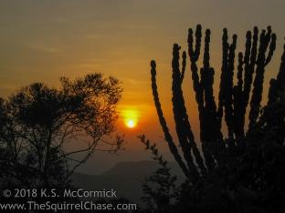 KSM-20110324-sunrise-02