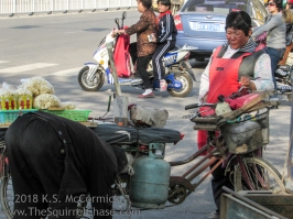 Vendor having her bike fixed at a street side bike repair.
