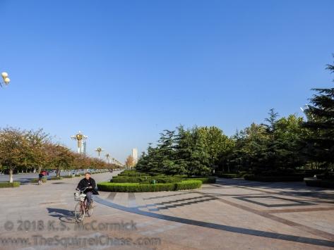 KSM-20151026-Bikes-01