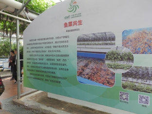 20180423-Veggie_Fair-Aquaculture-01