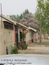 Looking along a street of traditional houses.