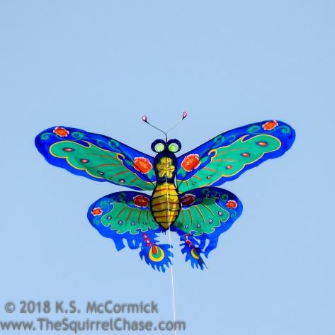 KSM-20170415-Kites-01