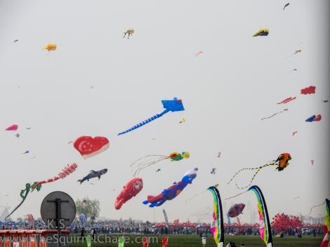KSM-20170415-Kites-22