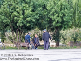 KSM-20171013-People_in_Parks-07