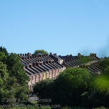 Rows of matching roof tops in Newburn.
