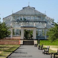 Temperate house in Kew Gardens, London-ish.