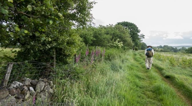 Hadrian's Wall Walk: Lanercost to Gilsland