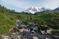 Edith Creek and Mount Rainier.