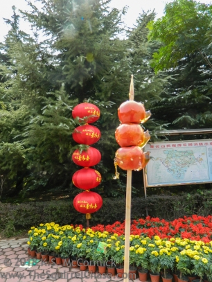 Lanterns and shan zha (hawthorn) on National Day in Weifang China.