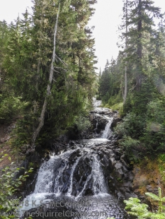 A series of low falls on the Paradise River at Mount Rainier.