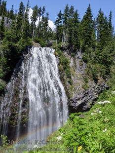 Narada Falls at Mount Rainier.